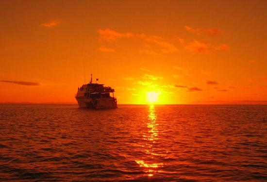 Pro Dive Cairns Day Trips: Pro Dive Boat at Sunset