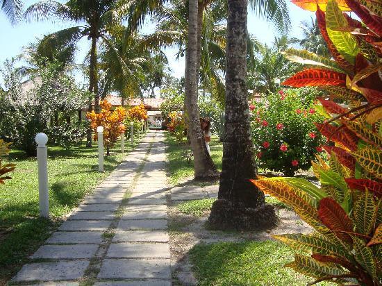 Hotel Village Paraíso Tropical: Parque de acceso a las cabañas