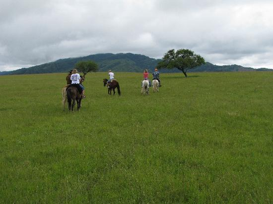 Casa Hernandez : Horseback riding is a must!