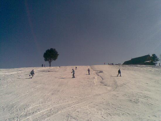 Nedou's Hotel: We enjoyed learning to ski - our first time!