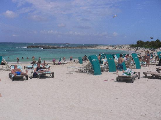 The Royal at Atlantis, Autograph Collection: Cove Beach on a very windy day.
