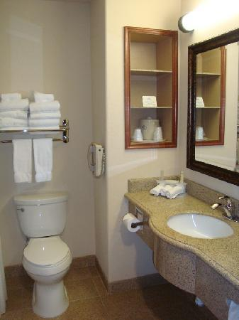 Holiday Inn Express Hotel & Suites Las Cruces: bathroom