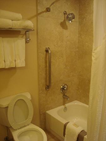 Holiday Inn Express & Suites Albuquerque Old Town: bathroom