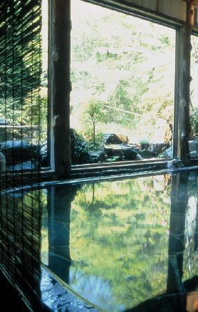 Tonosawa Ichinoyu Honkan: 大浴場