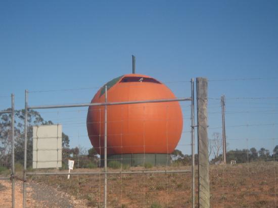 Berri Hotel: Big Orange