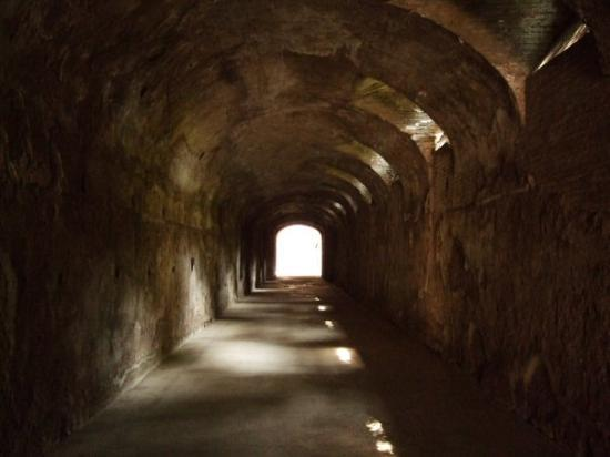 Palatine Hill: romano forum, rome