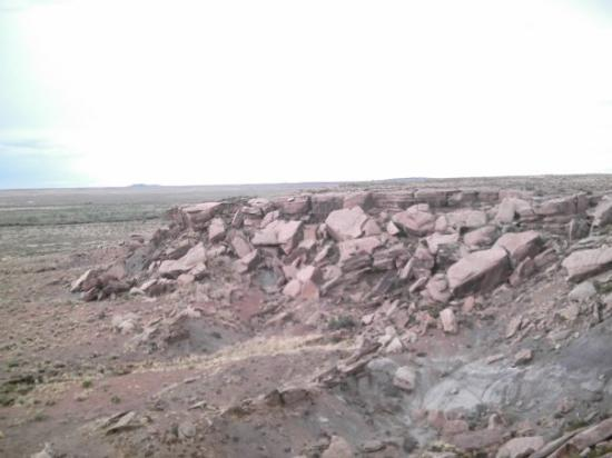 Petrified Forest National Park, AZ: ummm.... isn't there supposed to be a forest?