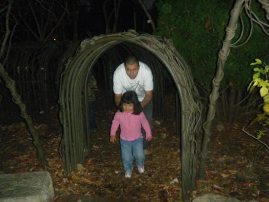 Lincoln Park Zoo: jas/daddy