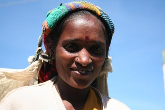 Negombo, Sri Lanka: Teepflückerin im Hochland