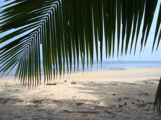 Bilde fra Pulau Tioman
