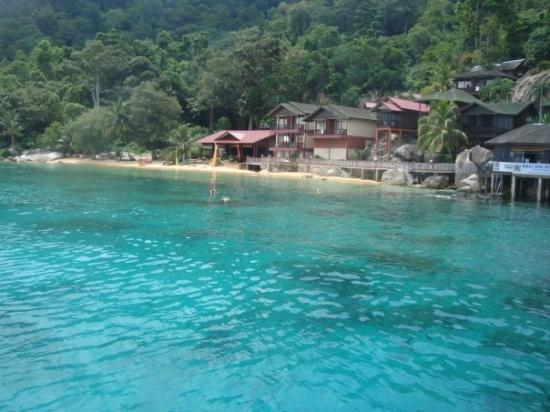 Pulau Tioman, Malaysia: aucune image n'a été retouchée au niveau de la coloration!