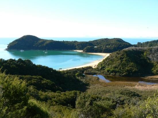 Bilde fra Abel Tasman National Park