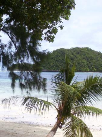 Koror, Palaos: Palau