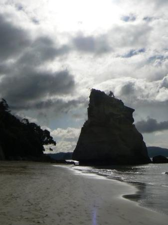 Whitianga Photo