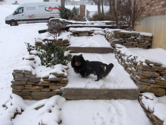 shorty and snow alexandria,ky
