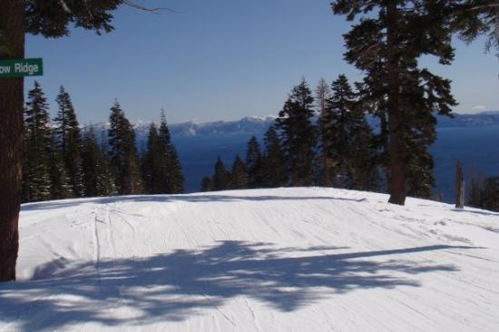 Homewood Mountain Resort: Skiing Homewood Tahoe.
