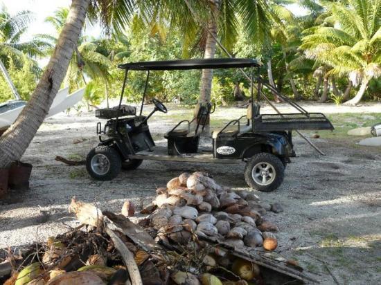 Maupiti Island, Fransk Polynesia: la bad boy !!!