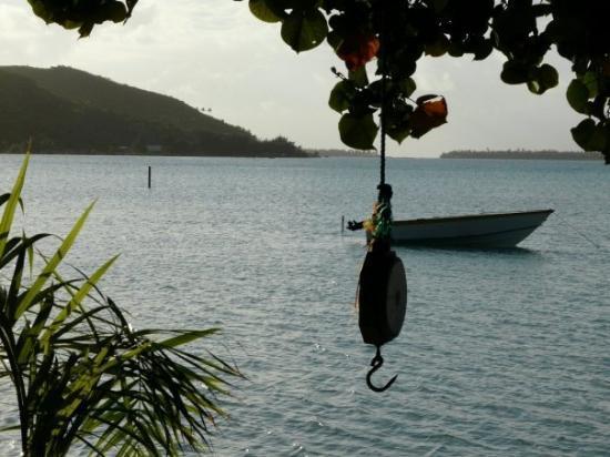 Maupiti Island, Fransk Polynesia: devant la salle à manger
