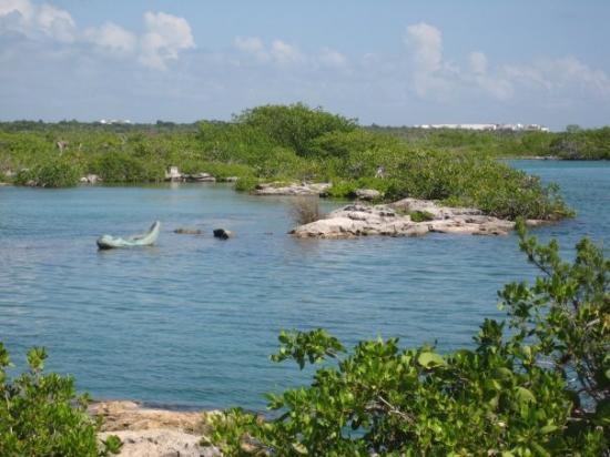 Akumal, Mexico: Yal Ku Lagoon