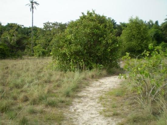 لاجوس, نيجيريا: Lekki Conservation Centre