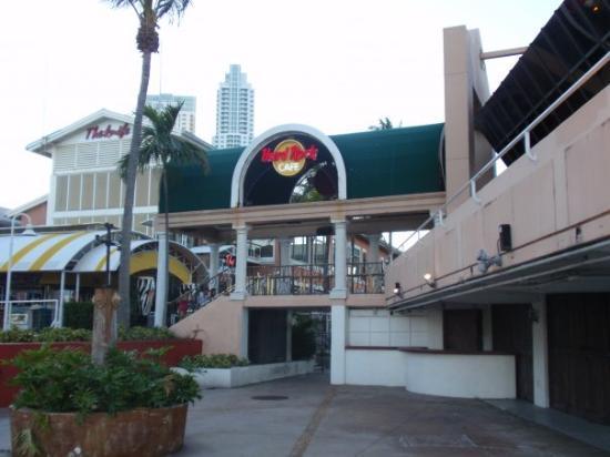 South Miami, FL: Hard Rock Cafe at Bayshore Miami