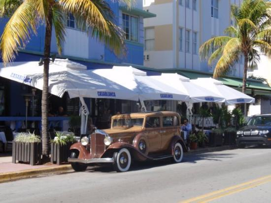 South Miami, FL: Covered cafes outside Casablanca Hotel
