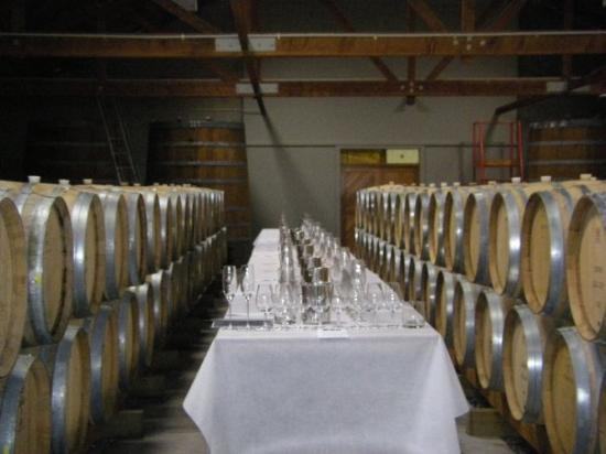 Group tasting set up at Cloudy Bay in the barrel room