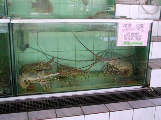 Kota Kinabalu, Malaysia: P1010001
