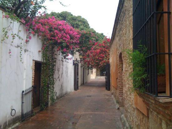 street in Santo Domingo