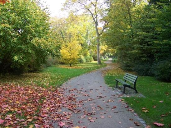 Würzburg, Bayern, Deutschland  Park in Heidingsfeld im Herbst