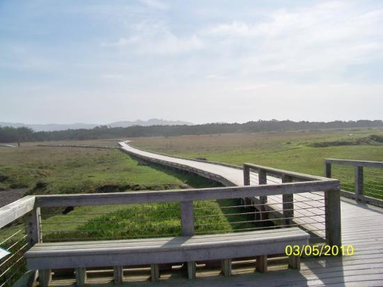 Bilde fra Fort Bragg