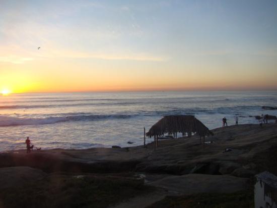Windansea Beach: DSC07715.JPG