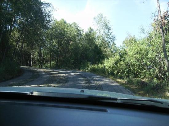 Morelia, Mexico: rumbo a las monarcas