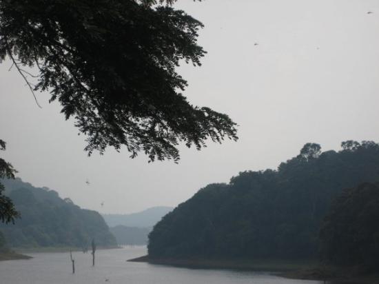 Thekkady, India: The Periyar lake!
