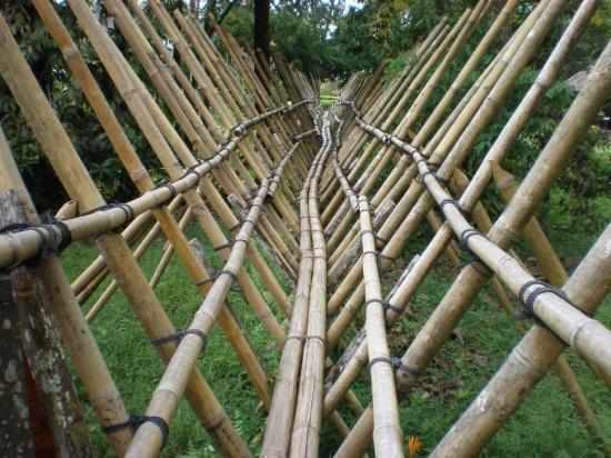 Kuching, Malaysia: Giant bamboo bridge used traditionally to walk over mangroves..