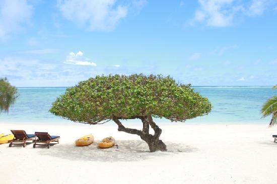 Etu Moana: beach facing view