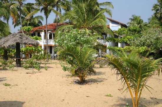 Stardust Beach Hotel: hotel