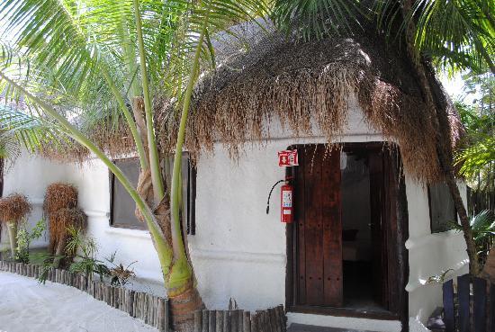 Playa Mambo: Room