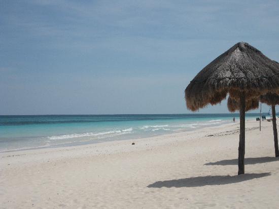Playa Mambo: Paradise