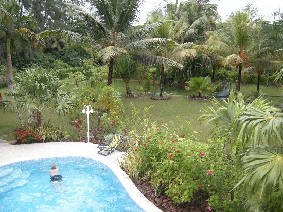 La Diguoise Guesthouse: piscine dans le jardin