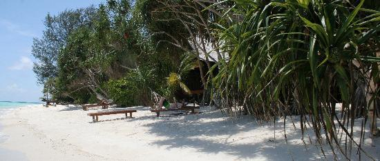 Lankayan Island Dive Resort: The beach outside our cabin