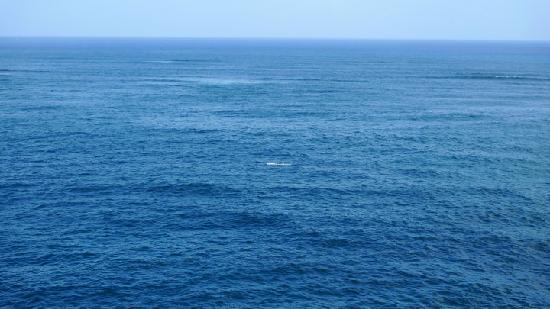 The Condado Plaza Hilton: the ocean again
