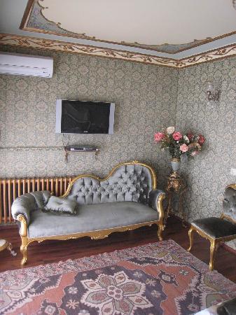 Romantic Hotel Istanbul: Sofa, carpet, ceiling