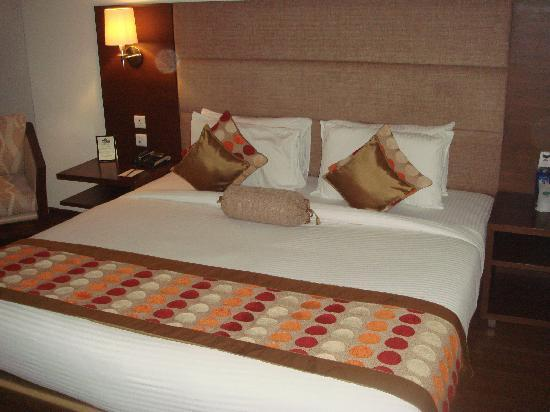 Country Inn & Suites by Radisson, Amritsar, Queens Road: Room