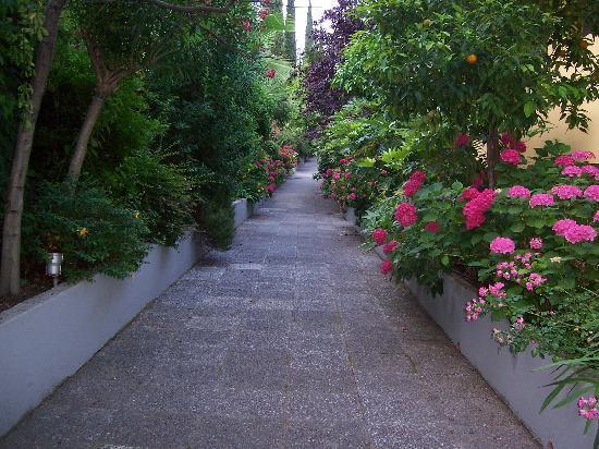 Hotel San Pietro: San Pietro gardens