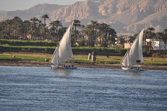 Pyramisa Isis Hotel & Suites Luxor: view from our window