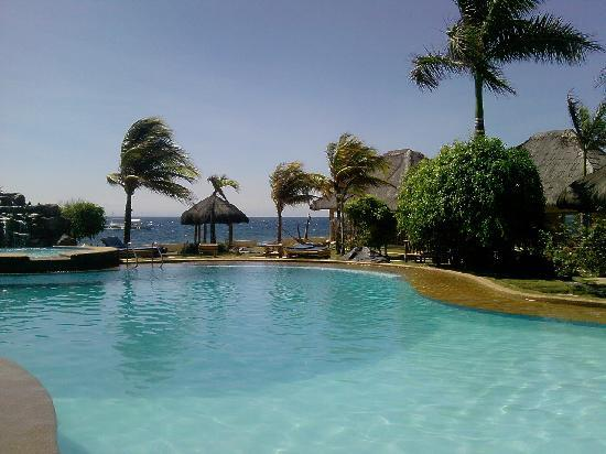 Piscine picture of thalatta resort zamboanguita - Hotels in dumaguete with swimming pool ...