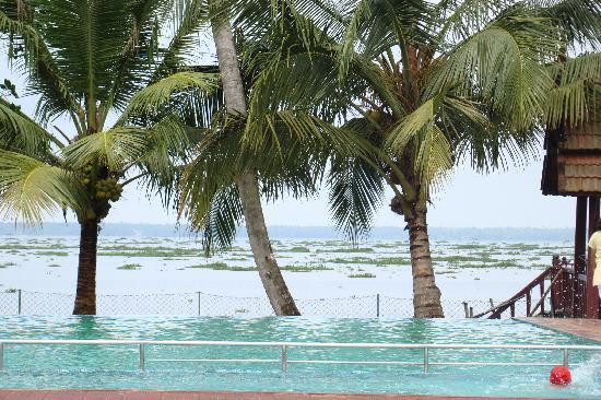 Abad Whispering Palms Lake Resort: Swimming pool eye leveled at the backwaters, gives experience as if ur swimmin in backwaters its