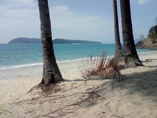 Sunset Beach Resort: the beach