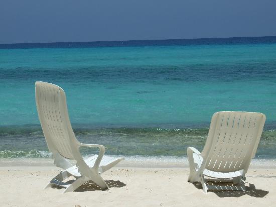 Kuramathi Island Resort: Wish I was sitting there right now!